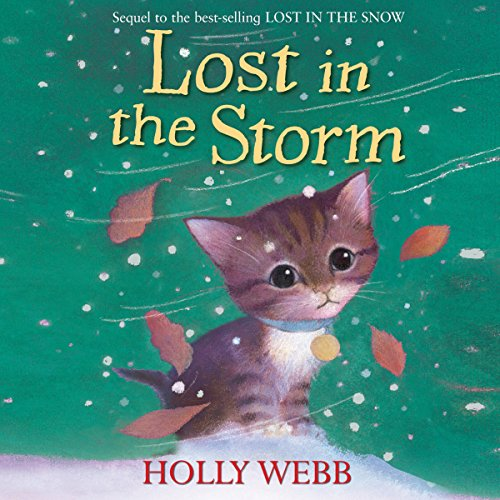 Lost in the Storm audiobook cover art