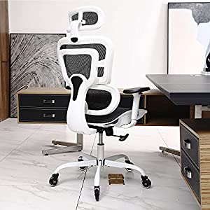 [Ergonomic Design] The ergonomic chair provides 4 support points (head/back/buttocks/hands) and proper lumbar support. The seat height, headrest and backrest easily adjusted to meet different needs. [Roller Blades Wheels] The roller blade wheels are ...