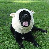 Onmygogo Divertido disfraz de Reideer para mascotas para perro, linda peluca peluda para Halloween Navidad Accesorios de ropa de mascotas (oveja, talla L)
