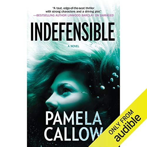 Indefensible cover art