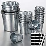 24 Pieces Small Metal Buckets Silver Mini Metal Pail Buckets with Handles 24 Pieces Chalkboard Label 1 Piece Chalk Marker for Party Favors Snacks Weddings Centerpieces Small Plants