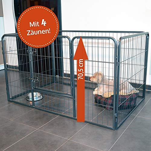zooprinz erstklassiges Freilaufgehege (Hundezaun) Dog Run - ideal für Welpen und große Hunde -Besonders stabiles Gitter - perfekt für drinnen und draußen - 4 Modelle zur Wahl, 70,5 cm