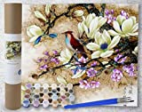 Paint by Numbers for Adults - Rolled Canvas Kits for Beginner Artists - Crease Free with Beautiful Watercolor Acrylic Paint - A Source of Relaxation (Dogwood Flower Perch)