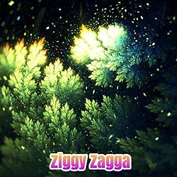 Ziggy Zagga