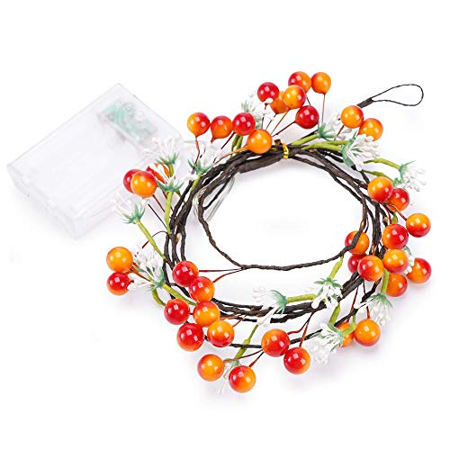 Astorn Berry Wire Garland Lights | Fairy Lights Solar | LED Lights Outdoor | LED Strip Lights Outdoor Waterproof | Backyard Lights | Lights for Patio | Bistro Lights