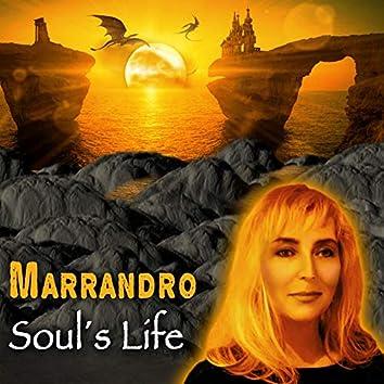Soul's Life