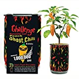 Peach Ghost Chili Growing Kit Can DIY Plant Home Garden Gift