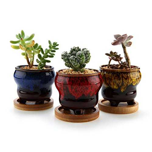 T4U 2.5 Inch Ceramic Succulent Planter Pot with Bamboo Tray Set of 3, Small Cactus Plant Pot Fambe Tripod Flower Container Window Box Home and Office Decoration Gift for Wedding Birthday Christmas