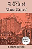 A Tale of Two Cities (Top Shelf Large Print Edition)