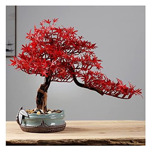 Xu Yuan Jia-Shop Bonsai Decorative Artificial Bonsai Tree Fake Planta Cerámica Potted Plant Pebble Bonsai Base Cerámica Oficina Inicio Oficina Interior Decoración Adornos Bonsai Tree (Color : C)