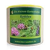 Keimsamen Rotklee 250g I Keimsprossen zur Bodenverbesserung I Ideal als Bienenweide & Vorkultur für Gemüse I Zertifiziertes Saatgut für 50 m²