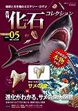月刊化石コレクション no.05―地球と古生物のミステリー・ロマン (朝日ビジュアルシリーズ)