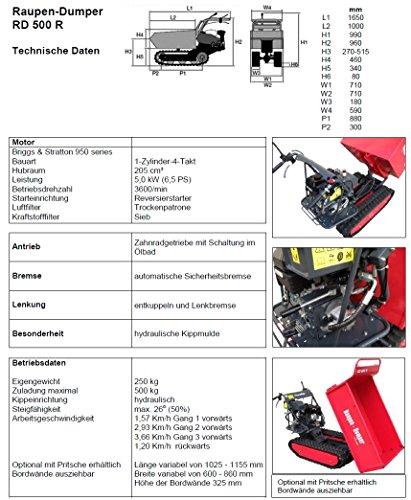 POWERPAC RD500R Pritsche – RAUPENTRANSPORTER RAUPENDUMPER DUMPER MINIDUMPER KETTENDUMPER - 7