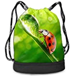 hengshiqi Mochila Backpack, Gymsack Ladybug Animal Print Drawstring Bags - Simple Gym Shoulder Bags
