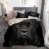 SSZO 3 Piezas Microfibra,Closeup Retrato de la Hermosa Perra Negra Cane Corso,1 Funda Nórdica y 2 Funda de Almohada (Cama 140 x 200cm)