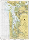 Historic Pictoric Vintage Map - Willapa Bay, WA, 1980 Nautical NOAA Chart - Vintage Wall Art - 24in x 33in
