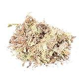 1pack 12l Sphagnum Secco Moss Garden Idratante Nutrizione Fertilizzante Organico Per Orchidea Phalaenopsis Musgo Sphagnum