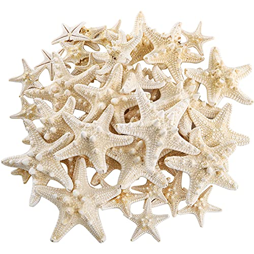 Okllen 40 Pieces Knobby Starfish Seashell, Natural Mixed Beach Starfish 1' to 2' and 2' to 3', DIY Crafts Sea Shells Stars Ocean Starfish for Wedding Decor, Beach Theme Party, Home Decoration, White