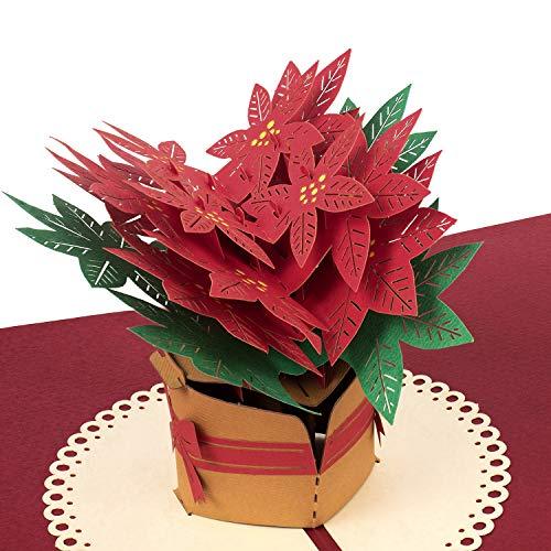 """PaperCrush® Pop-Up Karte Weihnachten """"Weihnachtsstern"""" - 3D Weihnachtskarte für Frauen, Geschenkkarte mit Poinsettia zu Weihnachten, Grußkarte zur Adventszeit oder Weihnachtszeit"""