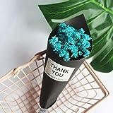 YILAN Mini bouquet de fleurs séchées oublie-me-cristal herbe bout des doigts caméra accessoires petit bouquet idées cadeau d'anniversaire