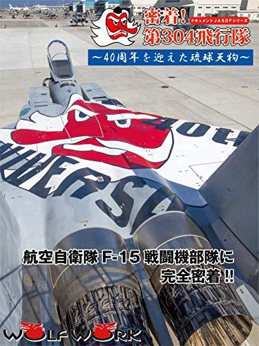 密着!第304飛行隊 40周年を迎えた琉球天狗