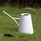 HORTICAN Galvanized Watering Can Modern Style Watering Pot with Handle for Outdoor and Indoor House Plants (0.6 gal/Light White)