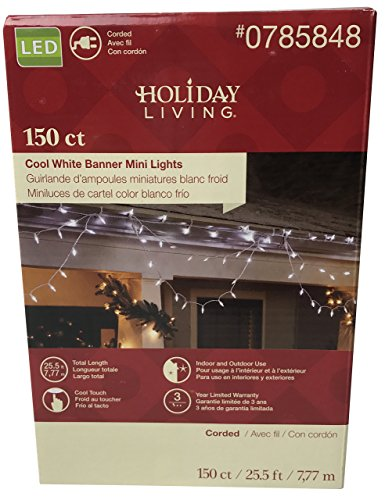 Price comparison product image Perfect Lights for Decoration: 150 count Cool White Banner Mini LED Lights by Holiday Living