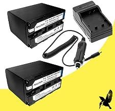 Best sony hdv 1080i battery Reviews