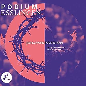 J.S.Bach: Johannespassion für Tenor allein, Cembalo, Orgel & Schlagwerk