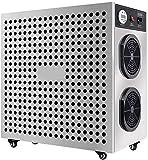WHSS 20G / H Portátil Generador De Ozono Esterilización Ozonizador Purificador De Aire, Ozono 50HZ Máquina For El Hogar, Verduras Coche Del Purificador Del Esterilizador De Frutas Del Filtro De Aire F