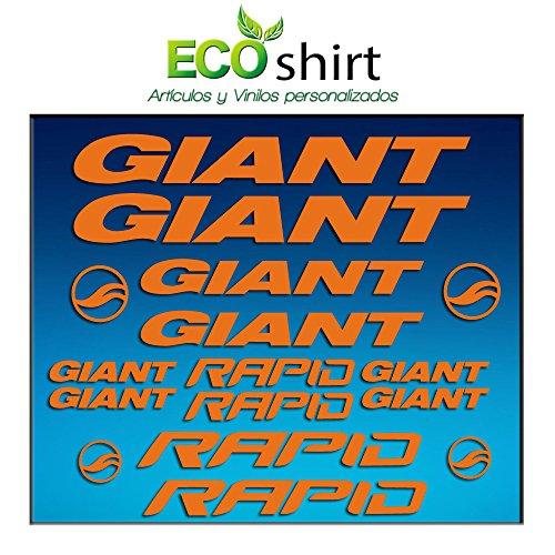 Ecoshirt 9G-OW8R-T88W Pegatinas Cuadro Frame Giant Rapid Am29 Stickers Aufkleber Decals Adesivi Bike BTT MTB Cycle, Naranja