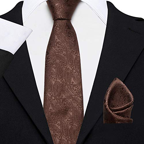 Axlon Men's Micro Polyester Paisley Necktie Set with Pocket Square and Brooch Pin (Brown, Free Size)