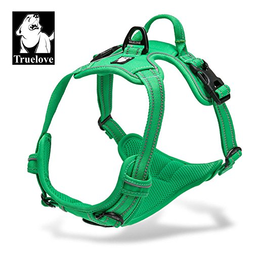 Truelove Experience Dog Harness, Front and Rear Leash Hook Up, Restriction Training Pulling Handle, Adjustable, 3M Reflective, Padded, All Weather (S, Wild Green)