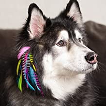 pet feather extensions