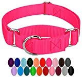 Country Brook Design - 1 Inch Martingale Heavyduty Nylon Dog Collar - Hot Pink - Large