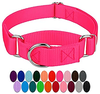 Country Brook Petz - Hot Pink Martingale Heavy Duty Nylon Dog Collar - 21 Vibrant Color Options  1 Inch Width Medium