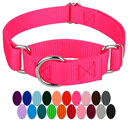 Country Brook Petz - Hot Pink Martingale Heavy Duty Nylon Dog Collar - 21 Vibrant Color Options (1 Inch Width, Medium)