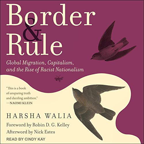 Border and Rule Audiobook By Harsha Walia, Robin D. G. Kelley - foreword, Nick Estes - afterword cover art