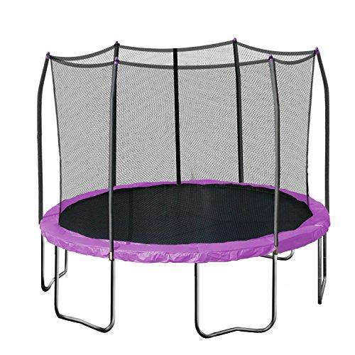Skywalker Trampolines Round Trampoline with Enclosure, Purple, 12-Feet