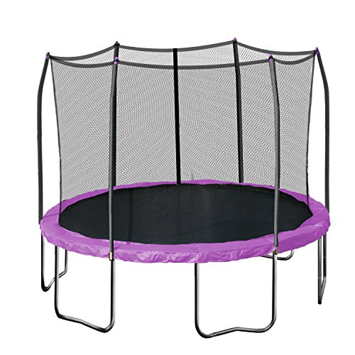 Skywalker Trampolines Round Trampoline with Enclosure, Purple, 12-Feet