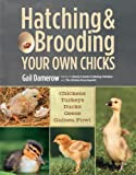 Hatching & Brooding Your Own Chicks: Chickens, Turkeys, Ducks, Geese, Guinea Fowl