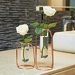 PuTwo Glass Flower Vases with Metal Stand, Set of 2