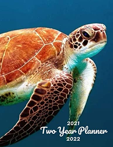 2021-2022 Two Year Planner: Turtle 24 Month Calendar Weekly Monthly Schedule Organizer Yearly Planner 2021-2022 2 Year Planner Notebook Aquarium fish ... tilapia salmon Octopus water sea creature
