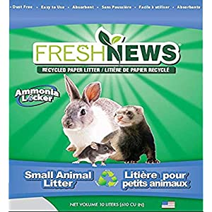 Top 12 Best Litter for Rabbits 2019: Reviews & Guide - My
