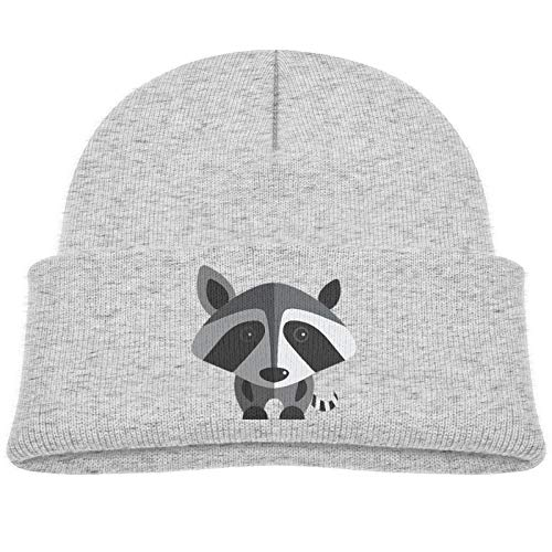 SHUANGFEI Kids Knitted Beanie Hats,Gray Raccoon,Skull Cap Winter Hip-hop Hat Headwear for Boys Girls Baby