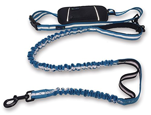Wagtime Club Hands Free Bungee Dog Leash - Smart 3-in-1 Design For Running, Hiking, or Walking with Durable Dual Handles, SmartPhone Pouch, Reflective Stitching, 4FT Length for Medium to XLarge Dogs -