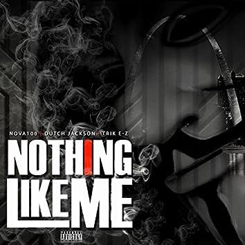 Nothing Like Me