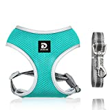 Puppy Harness and Leash Set - Dog Vest Harness for Small Dogs Medium Dogs- Adjustable Reflective Step in Harness for Dogs - Soft Mesh Comfort Fit No Pull No Choke (XS, Lake Blue)