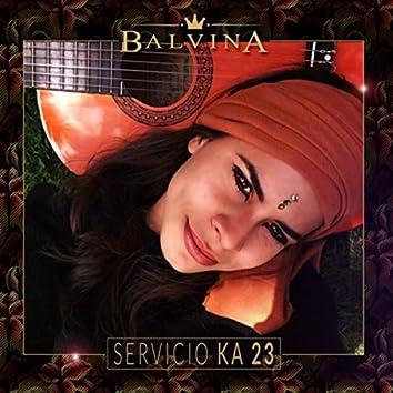 servicio ka 23