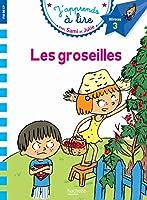 Sami Et Julie Cp Niveau 3 Les Groseilles (J'Apprends Avec Sami Et Julie)